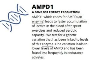 AMPD_1