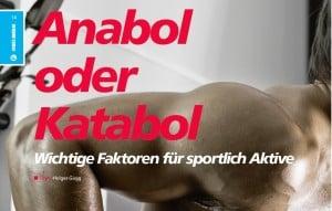 Anabol oder Katabol