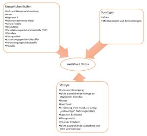Gründe für oxidativen Stress