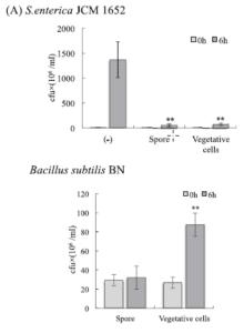 Bacillus Subtilis pathogen