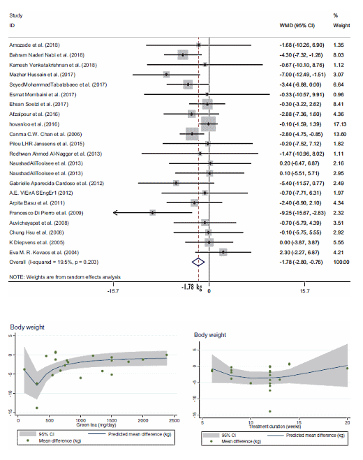 EGCG Effekte Grüntee Gewichtsreduzierung