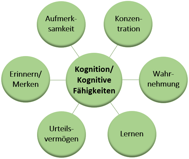HBN Mental Boost Kognitive Fähigkeiten