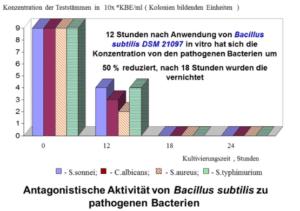 Selektives Entfernen pathogener Bakterien