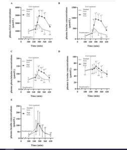 Studienaufbau EAA Kaloriendefizit 2