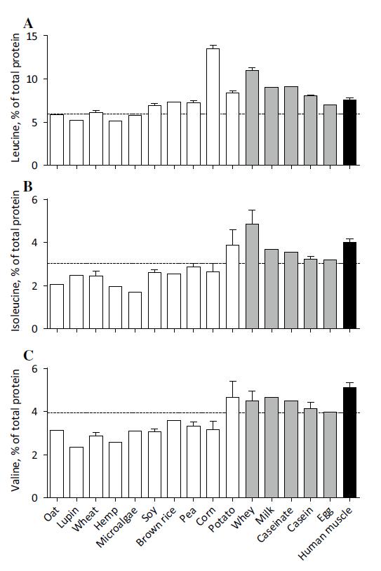 Aminosäuren tierische und pflantliche Quellen
