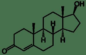 Testosteron Molekül
