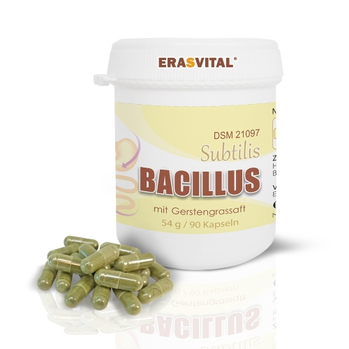 Bacillus Subtilis DSM 21097