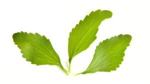stevia-1024647_960_720